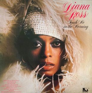 Diana Ross ‎- Touch Me In The Morning (LP) (VG/VG-)